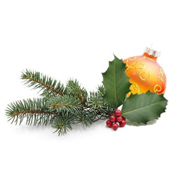 Christmas holidays - congés de noël